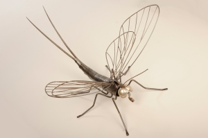 mayfly (38 x 35 inches)